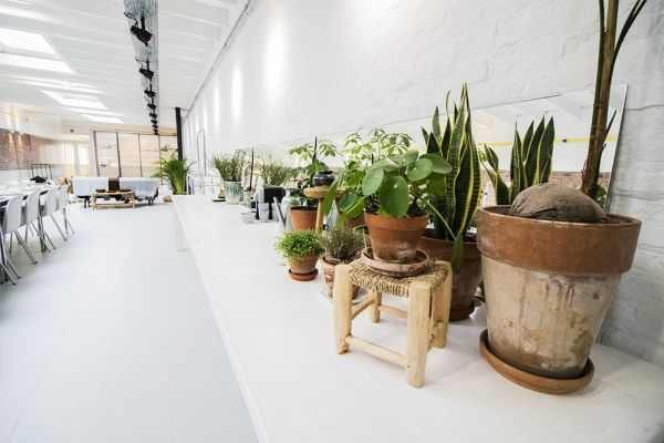 Picture of an event venue rental in Elsene, Brussels, Inside Gustave's loft 5625