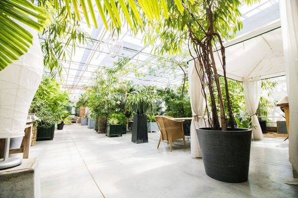 Picture of an event venue rental in Turnhout, Antwerp, Inside Eric & Ina's greenhouse 9275