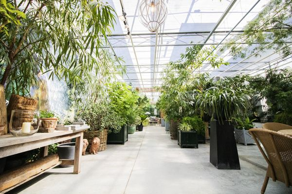 Picture of an event venue rental in Turnhout, Antwerp, Inside Eric & Ina's greenhouse 9277