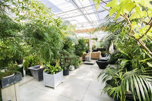 Picture of an event venue rental in Turnhout, Antwerp, Inside Eric & Ina's greenhouse 9284
