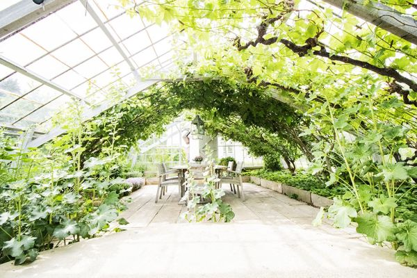 Picture of an event venue rental in Overijse, Flemish Brabant, Inside Béatrice & Christian's greenhouse 9759