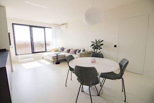 Feestzaal verhuren in Antwerp, Antwerpen, In het appartement van Greet 20754