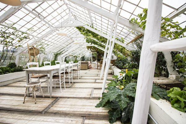 Picture of an event venue rental in Overijse, Flemish Brabant, Inside Marie's greenhouse 25