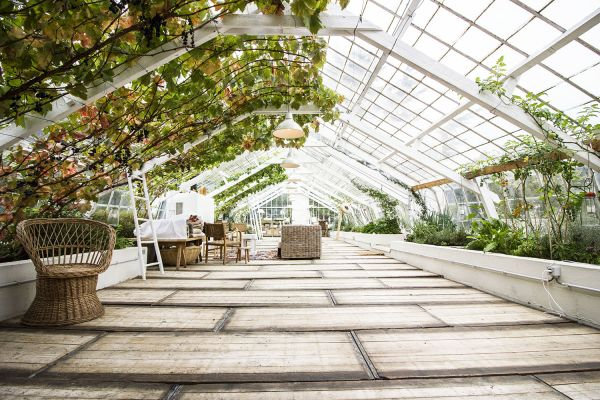 Picture of an event venue rental in Overijse, Flemish Brabant, Inside Marie's greenhouse 27