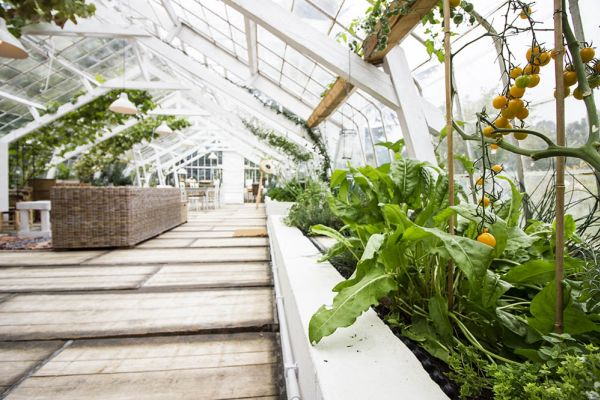 Picture of an event venue rental in Overijse, Flemish Brabant, Inside Marie's greenhouse 28