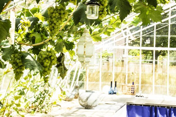 Picture of an event venue rental in Overijse, Flemish Brabant, Inside Arnaud's & Pascaline's greenhouse 65