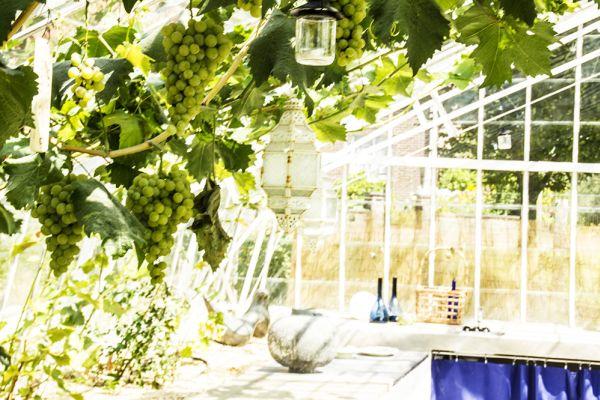 Feestzaal verhuren in Overijse, Vlaams-Brabant, In de serre van Arnaud & Pascaline 65
