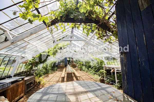 Picture of an event venue rental in Rosières, Walloon Brabant, Inside Bruno & Amandine's greenhouse 11185