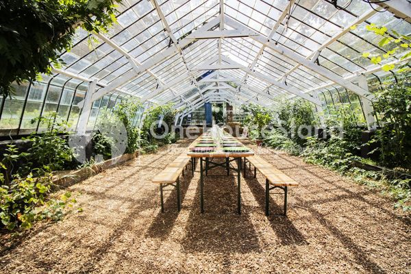 Picture of an event venue rental in Rosières, Walloon Brabant, Inside Bruno & Amandine's greenhouse 11186