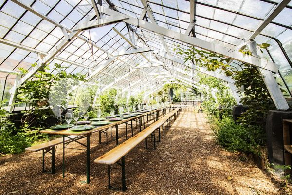 Picture of an event venue rental in Rosières, Walloon Brabant, Inside Bruno & Amandine's greenhouse 11188