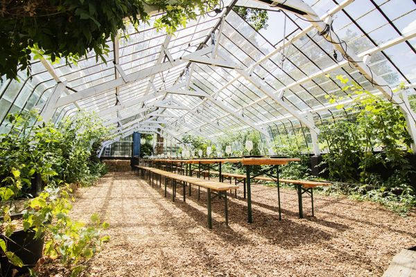 Picture of an event venue rental in Rosières, Walloon Brabant, Inside Bruno & Amandine's greenhouse 11227