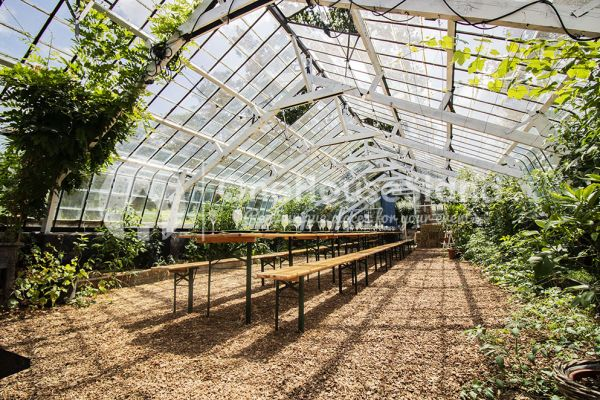 Picture of an event venue rental in Rosières, Walloon Brabant, Inside Bruno & Amandine's greenhouse 11230