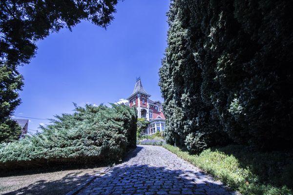 Photo d'une salle à louer à Hoeilaart, Brabant Flamand, Dans la serre de Cécile & Michel 2817