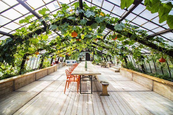 Picture of an event venue rental in Overijse, Flemish Brabant, Inside Donatienne's greenhouse 3772