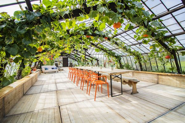 Picture of an event venue rental in Overijse, Flemish Brabant, Inside Donatienne's greenhouse 3773