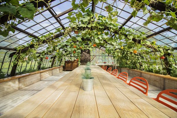 Picture of an event venue rental in Overijse, Flemish Brabant, Inside Donatienne's greenhouse 3791