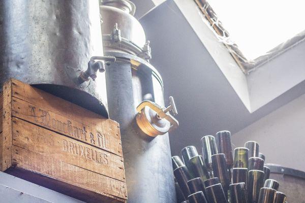 Photo d'une salle à louer à Elsene, Bruxelles, Dans la cave de Christophe 3839